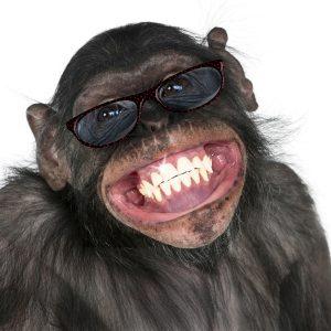 קידום רופא שיניים